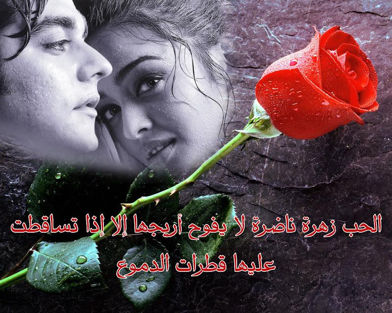 بالصور كلام حب رومانسي , كلمات لها معانى كثيره للحب 446 7