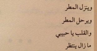 صوره اشعار حب وشوق , اجمل الكلمات و المدح للحب والاشواق
