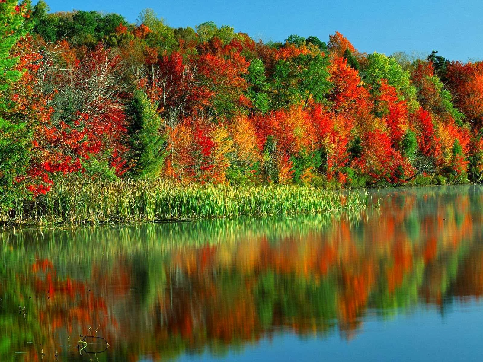 بالصور صور طبيعة جميلة , اجمل المناظر الطبيعيه الخلابة 505 4