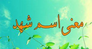 بالصور ما معنى اسم شهد , اجمل اسماء البنات واجددها 513 2 310x165