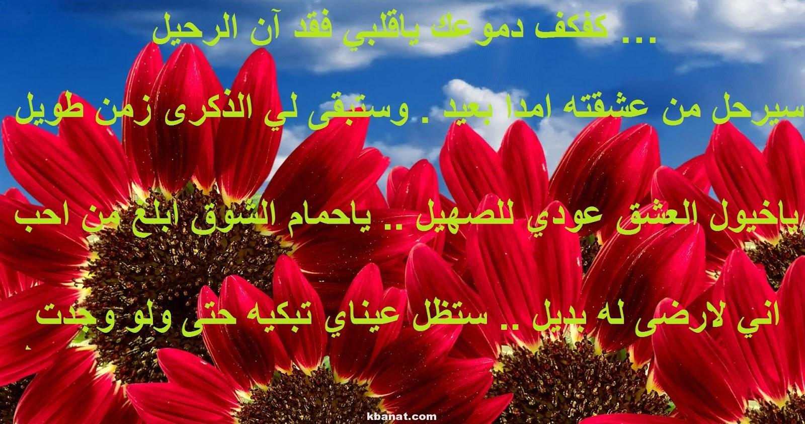 بالصور رسائل حب ساخنة جزائرية , اجدد الصور لحب جامد 631 2