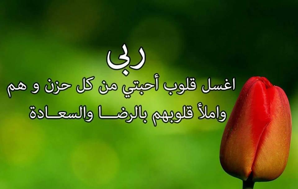 بالصور صور كلام جميل , خير الكلام ما قل ودل 634 4