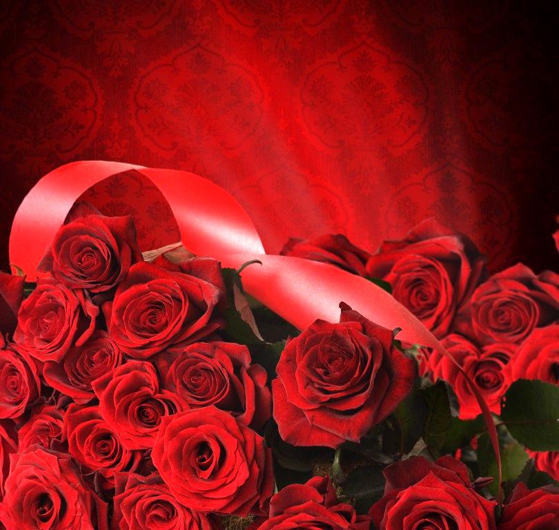 بالصور صور ورد خلفيات , فنون اختيار الخلفيات الطبيعيه و الورود 636 3