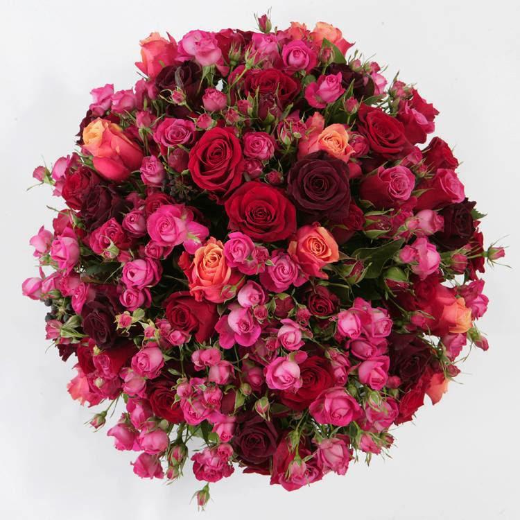 بالصور صور ورد خلفيات , فنون اختيار الخلفيات الطبيعيه و الورود 636 4