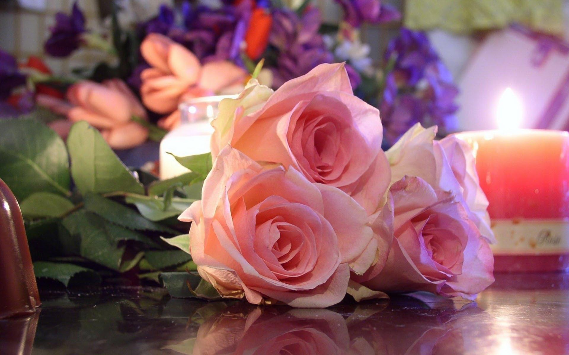 بالصور صور ورد خلفيات , فنون اختيار الخلفيات الطبيعيه و الورود 636 7
