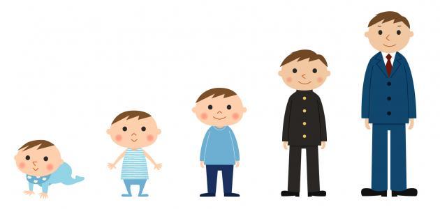 بالصور تطور الطفل , مراحل الطفولة المتطورة 728
