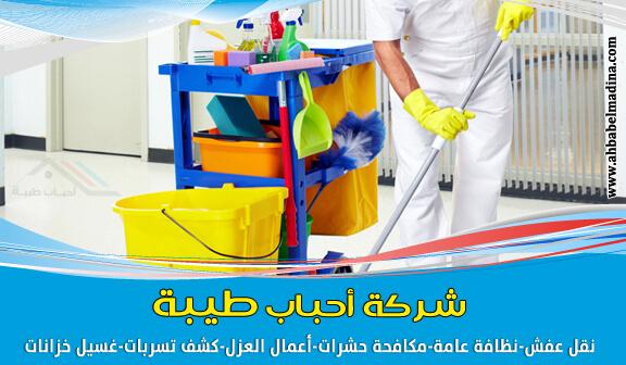 بالصور شركة تنظيف منازل افضل شركات التنظيف المنزلى 755 12