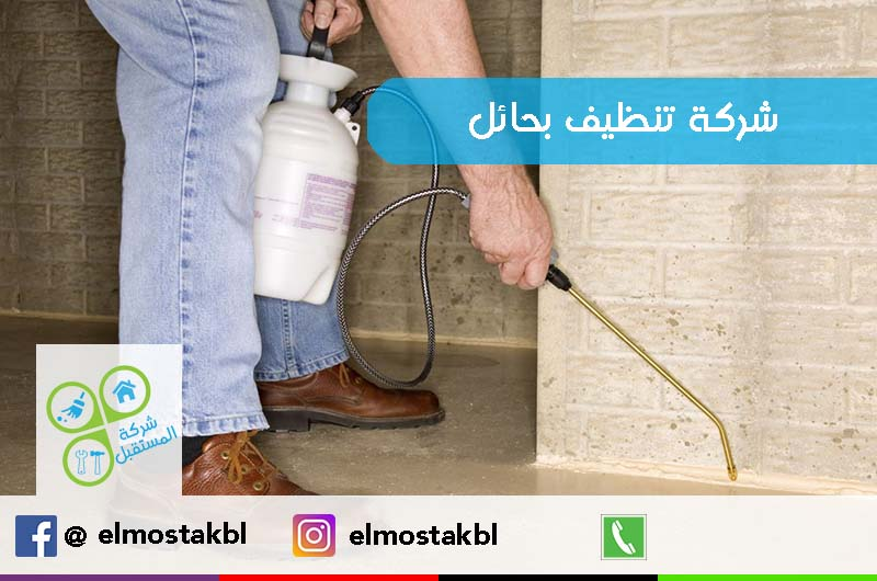 بالصور شركة تنظيف منازل افضل شركات التنظيف المنزلى 755 6