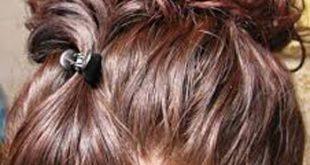 صورة حنة الشعر , نبات الحنة لتغذية الشعر