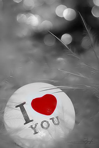 بالصور خلفيات رومانسية , احدث صور خلفيات الحب والغرام 819 9