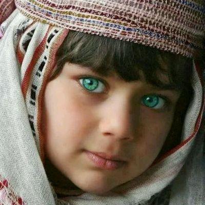 بالصور عيون الريم , غزال الريم وعيونة الجميلة 806 5
