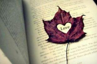 صوره حكم واقوال عن الحب , اجمل كلام الحب