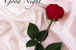 صوره مساء الورد شعر , اشعار رائعه جدا