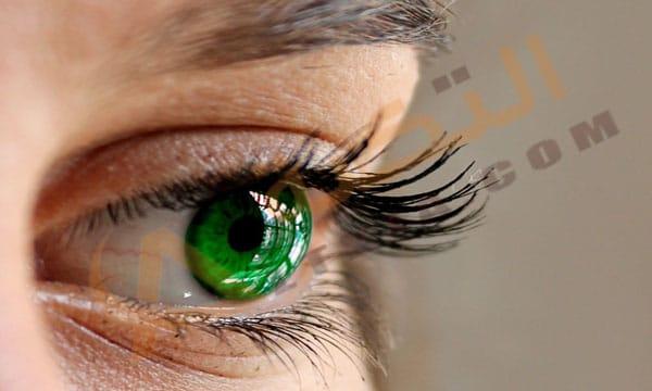 بالصور صور عيون خضر , اجمل خلفيات عين باللون الاخضر 6661 10