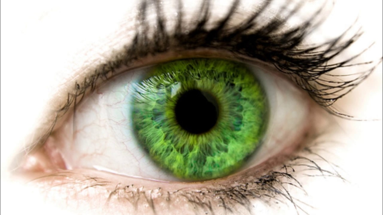 بالصور صور عيون خضر , اجمل خلفيات عين باللون الاخضر 6661 6