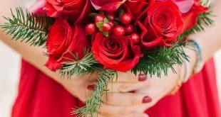 صوره صور ورود جميله , اجمل الورود الطبيعيه