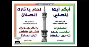 بالصور حكم تارك الصلاة , عقوبه تارك الصلاة 3963 3 310x165