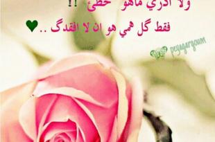 صورة رسالة اعتذار للزوج , كلمات ومسجات اعتزار للزوج