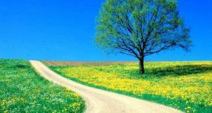 بالصور صور من الطبيعة , مناظر طبيعية ساحرة وخلابة 6263 5 1 310x165