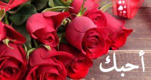 بالصور اجمل ورود الحب , صور ورود رومانسية جدا 6611 12 310x165