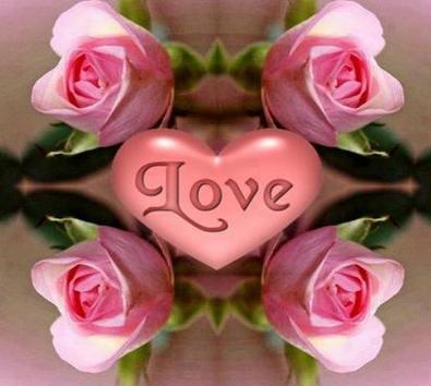 بالصور اجمل ورود الحب , صور ورود رومانسية جدا 6611