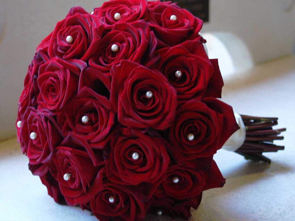 بالصور اجمل الورود الرومانسية , احلى وارق الورود الرومانسية 11681 2