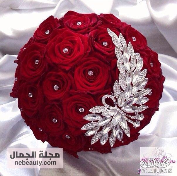 بالصور اجمل الورود الرومانسية , احلى وارق الورود الرومانسية 11681 3