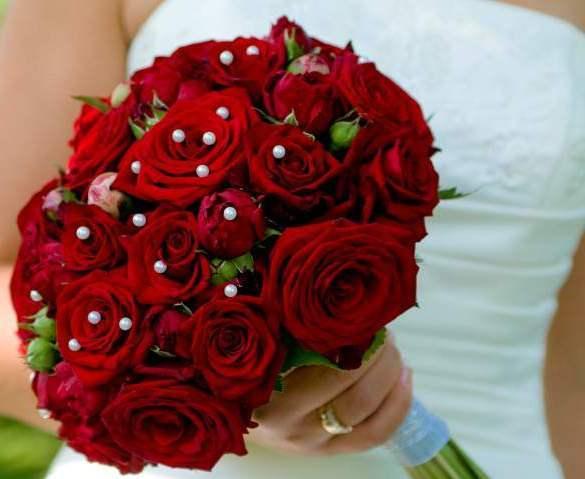 بالصور اجمل الورود الرومانسية , احلى وارق الورود الرومانسية 11681 4