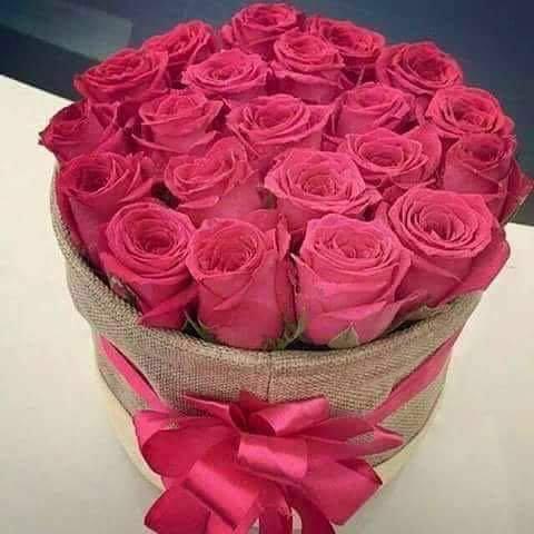 بالصور اجمل الورود الرومانسية , احلى وارق الورود الرومانسية 11681 7