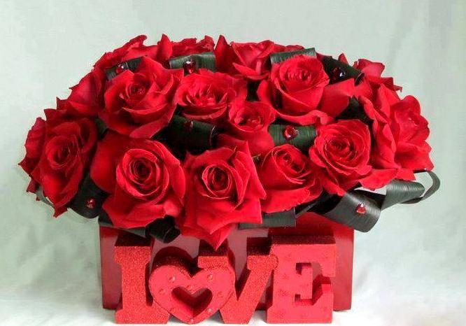 بالصور اجمل الورود الرومانسية , احلى وارق الورود الرومانسية 11681