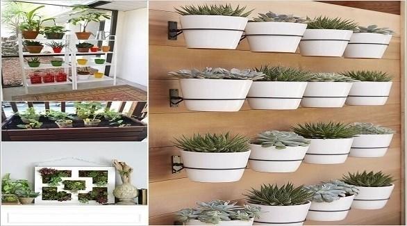 بالصور تصميمات حدائق منزلية , افكار جديدة لحدائق منزلية 12489 9