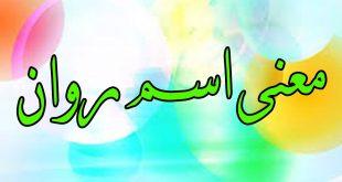 بالصور معنى روان , ماذا تعنى كلمة روان فى اللغة العربية ؟ 6624 4 310x165