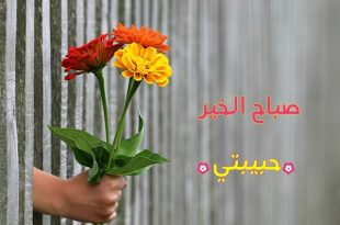 صورة صباح الخير حبيبتي , بوستات صباحية رومانسية بين الحبيبين