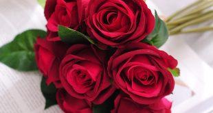 بالصور باقات زهور , تعرفى على اغلى هدية للمحبين 2133 21 310x165