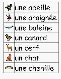 صور كلمات فرنسيه , اجمل كلمات مترجمه