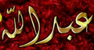 بالصور صور اسم عبدالله , رمزيات وخلفيات باسم عبدالله 2738 15 310x165