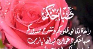 بالصور شعر عن الورد , بالصور عبارات جميلة قيلت عن الورد 2769 13 310x165