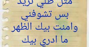 بالصور شعر شعبي , شعر عامى عربى 3338 12 310x165