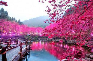 صور اجمل الصور الطبيعية في العالم , صور مناظر طبيعيه و لا اروع