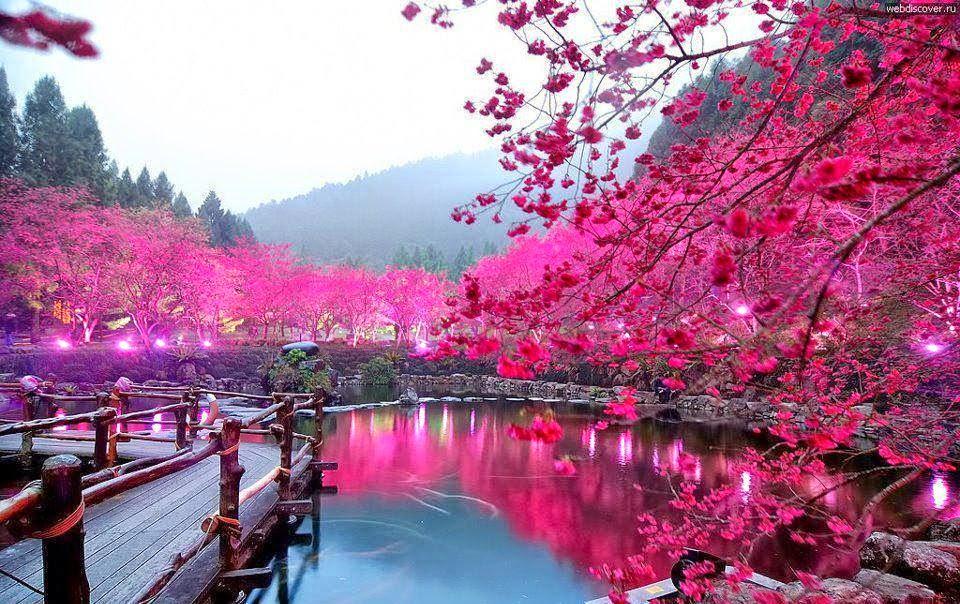 صورة اجمل الصور الطبيعية في العالم , صور مناظر طبيعيه و لا اروع