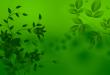 صور خلفية خضراء , خلفيات خضراء اللون روعه