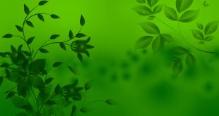 صورة خلفية خضراء , خلفيات خضراء اللون روعه