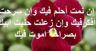 بالصور اروع رسائل الحب , مسجات حب معبره 4052 12 310x165