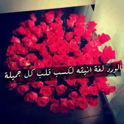 بالصور خواطر عن الورد , الورد و اهميته فى حياتنا 4190 9