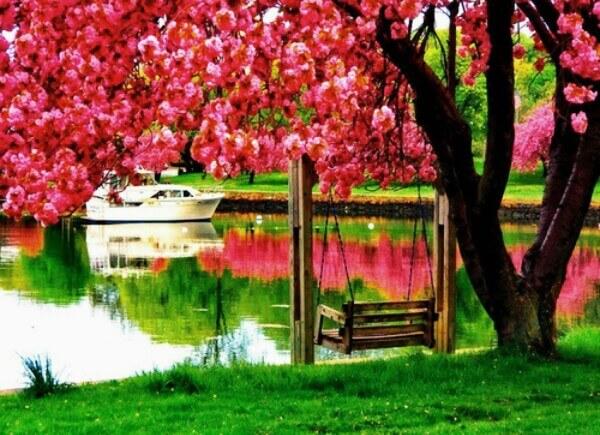 بالصور صور مناظر جميلة , اروع مناظر طبيعيه 4195 10