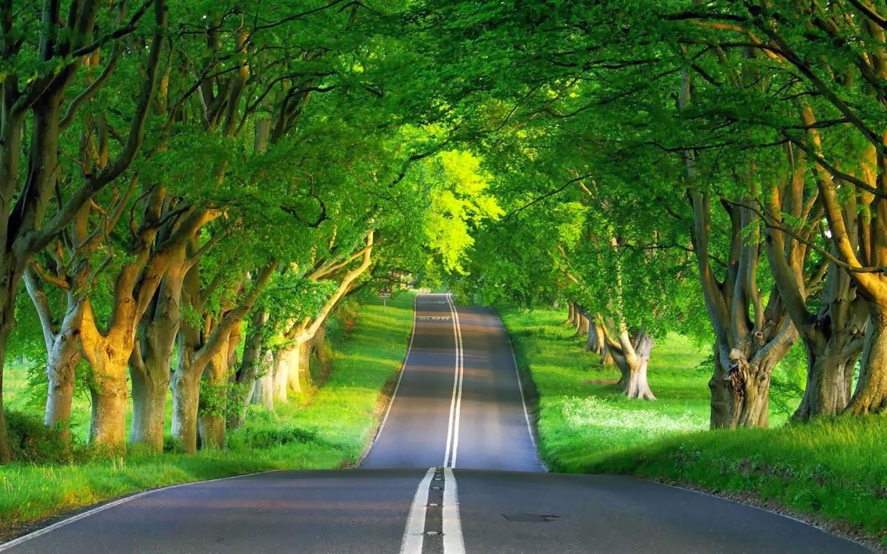 بالصور صور مناظر جميلة , اروع مناظر طبيعيه 4195 8