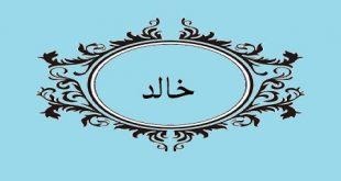 بالصور معنى اسم خالد , روعه معنى اسم خالد 5284 2 310x165