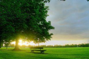 صورة اجمل صور الصباح , صور صباحات مشرقه