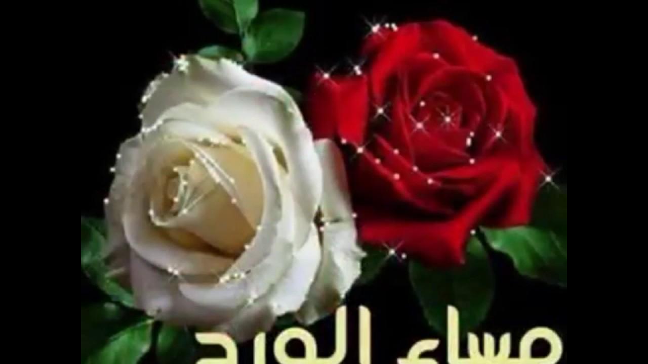 صورة بطاقات مساء الورد , اروع رسايل مساء الورد 5308 2