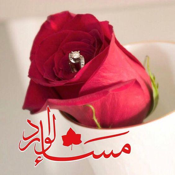 صورة بطاقات مساء الورد , اروع رسايل مساء الورد 5308 4
